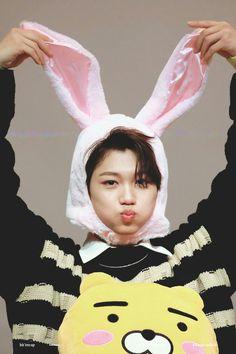 Oh oke, ini kelinci yang tersesat lagi Wattpad, Sung Lee, Young K, Felix Stray Kids, Kid Memes, Lee Know, Fan Fiction, Kpop Boy, K Idols