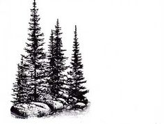 stampscapes pines and rocks - Google Search