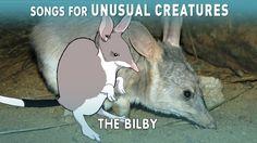 The Easter Bilby? | Unusual Creatures | PBS Digital Studios