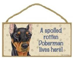 A Spoiled Rotten Doberman (Black) Lives Here Wooden Signs by SJT. $8.95. A perfect plaque to hang in your home on a wall or door, and show the passion and lover you have for this cute dog breed.  Makes a wonderful gift for your dog loving friends and family.  Indoor use only. Over 60 different breeds to choose from. Size: 5''x10'' & Made in USA
