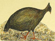 Marina Strocchi : Orange footed scrub fowl
