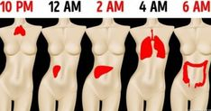Why You're Waking Up at the Same Time Every Night According to Traditional Chinese Medicine, chronic sleep disorders are usually caused by a Yin-Yang imbalance Health And Beauty, Health And Wellness, Health Fitness, Relaxation Exercises, Nursing Programs, Home Health Care, Arm Fat, Endocrine System, Traditional Chinese Medicine