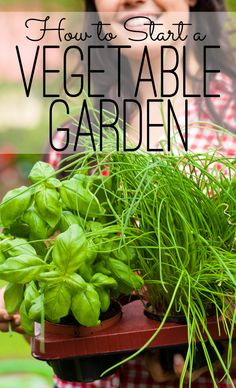 How to Start a Vegetable Garden: Growing vegetables is easy. The first thing you need to know is anyone can have a green thumb. It's really all about paying attention to the plants in the garden. Follow these simple steps to start a vegetable garden. The Seasoned Homemaker
