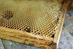 How to Remove Honey From a Comb