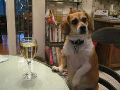 Is this White Wine for me?