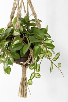Magical Thinking Hand-Knotted Hanging Plant Holder #urbanoutfitters
