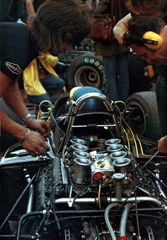 Ronnie Peterson , Lotus 72E , 1973