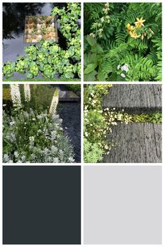 The Colour Palettes of Chelsea Flower Show 2015 - The Chromologist