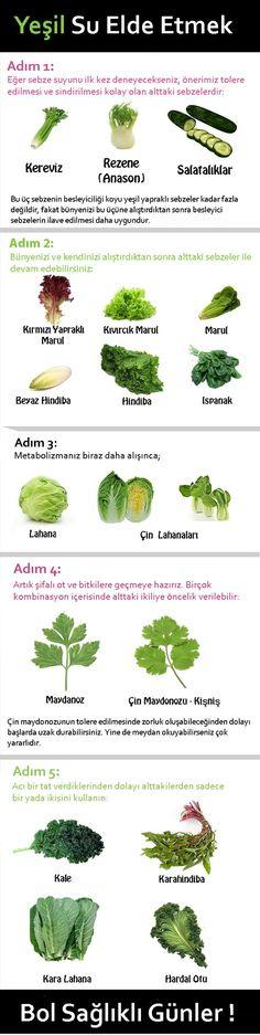 Yeşil Sebze ve Bitki Suları Kılavuzu