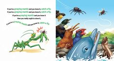 I chose this illustration because I like the drawing of the birds and animals, looking so desperately to catch the fly. I also like the praying mantis. Mahardhika, S. If You Are A Kiwi And You Know It [online image] retrieved from: Praying Mantis, Illustration Art, Illustrations, Online Images, Choose Me, Kiwi, Knowing You, Birds, Drawing