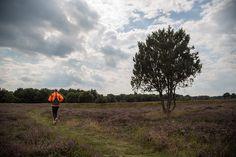 Run2Day Magazine N°3 - Hardlopen in Drenthe   Run2Day - Maakt hardlopen nog leuker