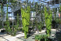 MFO park, vertical garden