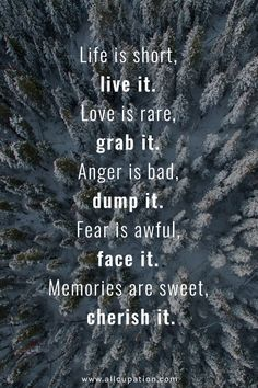 Live it, grab it, dump it, face it, cherish it.                                                                                                                                                                                 More