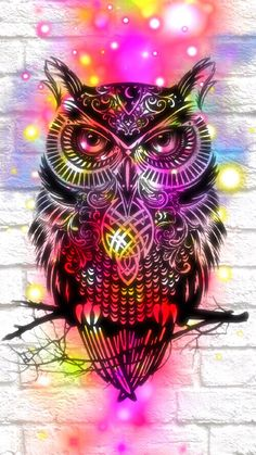 Owl hipster cute