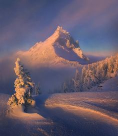 """THE CLEARING""  Jefferson Wilderness, Oregon, Marc Adamus"
