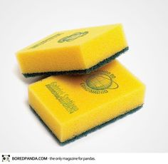 A business card for Mundo do Condomínio which sells cleaning products. It was printed on a real sponge, small enough to keep in a wallet. (Advertising Agency: Fields, Brazil)