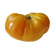 We carry seeds for many Heirloom Tomatoes including Brandywine, Cherokee Purple, Cherry, Pineapple, and Indigo Rose. Our Heirloom Tomatoes are open-pollinated. Heirloom Tomato Seeds, Heirloom Tomatoes, Potted Fruit Trees, Types Of Lettuce, Tomato Vine, Pepper Seeds, Beautiful Fruits, Organic Seeds, Stuffed Hot Peppers