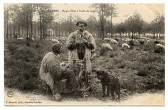 Bergers des Landes filant au rouet.