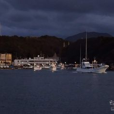 Unbelievable, they are going out. All 12 boats. #tweet4taiji #dolphinproject #tweet4dolphins #coveguardians #seasheperd