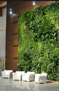 vertical garden sundar italia ospedale rovigo