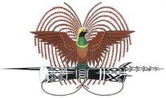 papua new guinea bird of paradise designs - Google 搜索