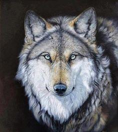 Wolf ~ Roberto Bianchi, pastel art: