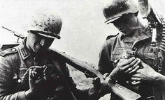 Kittens and German soldiers: eternal Love!