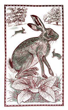 Hare Tea Towel by Richard Bawden