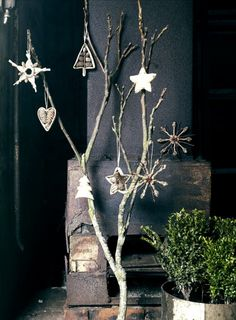 #xmas #christmas #weihnachten #deco #nature