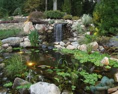 Koi Pond Waterfall Home Design Ideas, Pictures, Remodel and Decor
