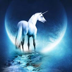 THE SOURCE: The 11/11 & 11/14 SUPERMOON in Taurus ~ Opens Path...