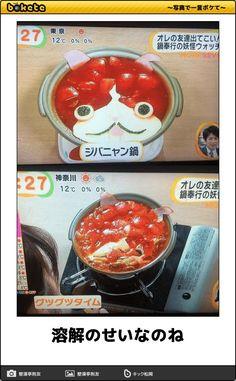 写真で一言 ボケて(bokete) Japanese Funny, Happy Today, Can't Stop Laughing, Wtf Funny, Funny Moments, Cringe, Funny Photos, Humor, Memes