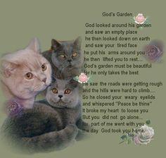 For all my precious fur babies waiting at the Bridge ~. I Love Cats, Crazy Cats, Cute Cats, Pet Loss Quotes, Cat Love Quotes, Pet Loss Grief, Pet Remembrance, Cat Posters, Cat Memorial