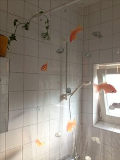 Transparent Shower Curtain Spirella Goldfish Orange Ivy Bathroom Window