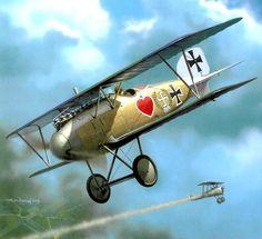 Albatros DIII Werner Voss