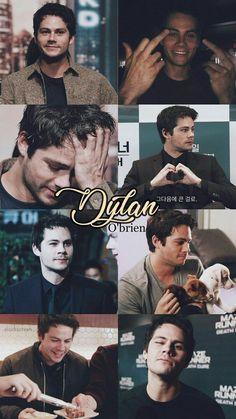 Dylan the beta person Stiles Teen Wolf, Teen Wolf Boys, Teen Wolf Dylan, Teen Wolf Cast, Tyler Posey, Maze Runner Actores, Dylan O'brien Hot, Dylan O Brien Cute, Dylan O Brain