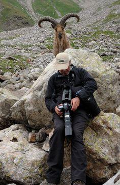 Fotógrafo prepara camara con testigo en el Kabardino-Balkaria reserva en Rusia.