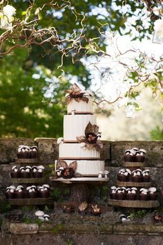 Woodland Rustic Cake and Cupcakes