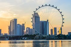 Planning for holiday in Singapore? Tour My India brings you list of popular tourist places in Singapore that you must visit on your holiday tour. Singapore Tour Package, Puerto Rico, Holiday In Singapore, Gardens By The Bay, Tourist Places, Day Tours, Beautiful Beaches, The Good Place, Around The Worlds