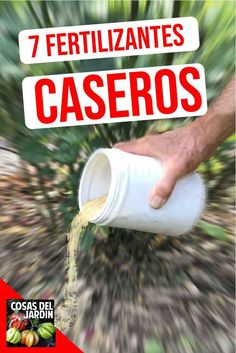 7 recetas de fertilizantes caseros para tus plantas - Cosas del Jardin I leave you seven recipes of homemade fertilizers for you to try. They are made from ingredients you probably already have on han Fruit Garden, Garden Planters, Herb Garden, Garden Roses, Edible Garden, Lidl, Organic Gardening, Gardening Tips, Gardening Direct