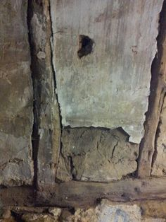 Mud and timber cellar wall. ( Elm I think)