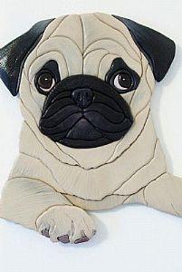 Suzy Pug  #pugs