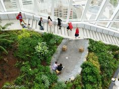 The Sky Garden in London. You can visit this urban jungle with a spectacle 360 view over the city for free - More on www.mapofjoy.nl
