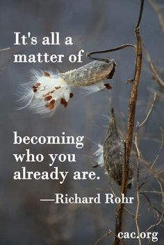 Now i can become who i already was. Richard Rohr