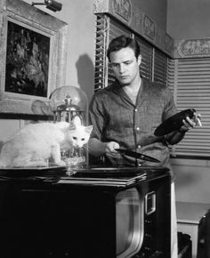 Famous people hanging out with their vinyl | Marlon Brando and his cat listen to records | Vintage Vinyl