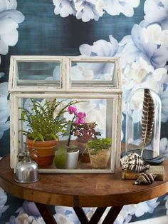 Pick up a few inexpensive frames, and turn them into a cute terrarium that you can fill with houseplants.