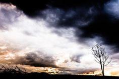 Céu inventado... Cena rural/invented sky... rural scene