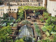décoration orientale de jardin avec pergola vue de l'étage