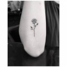 Fine line rose tattoo on the right forearm.