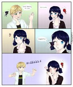 Miraculous ladybug | Tumblr Omg I like this, I've never seen any art of the Kwamis interacting with the other person